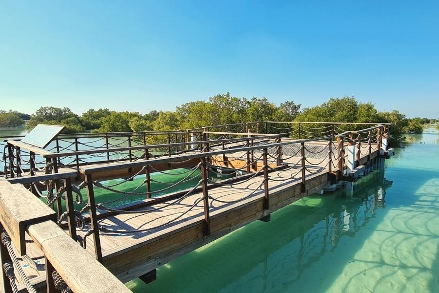 Jubail Island mangroves
